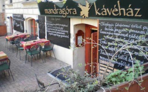 Mandragóra Kávéház