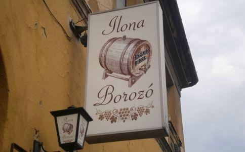 Ilona Borozó